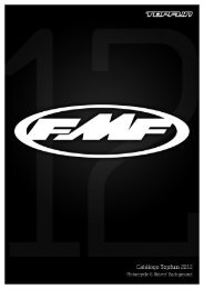 FMF12.pdf