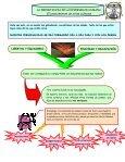 32-4-importancia de la diversidad humana - Page 2