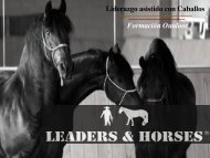 Formación Outdoor Liderazgo asistido con Caballos - Leaders and ...