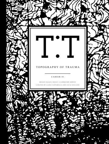 TOPOGRAPHY OF TRAUMA - Landform