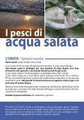 pesce - Aiab Veneto - Page 5