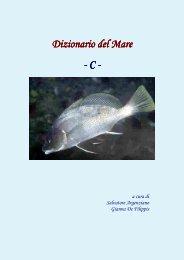 Dizionario del Mare Dizionario del Mare - C - Vesuvioweb