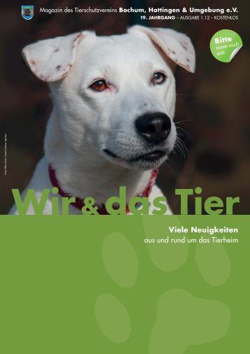 Download Ausgabe 1.12 - Tierheim Bochum