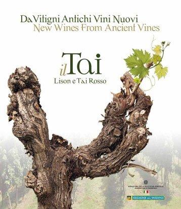 Scarica il libro - Consorzio Vini Venezia