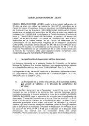 Demanda Acción de Protección contra Ministerio de Ambiente