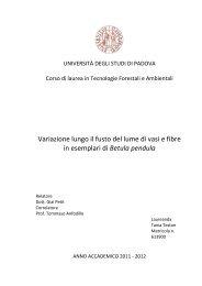 Documento PDF - Università degli Studi di Padova