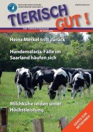 Winter 2009/2010 - Deutscher Tierschutzbund Landesverband ...