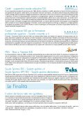 Manifesto ELIS - TECA ELIS - Page 2