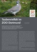 TierSchutzMagazin NR. 12 hier als PDF-Datei öffnen oder speichern. - Seite 6