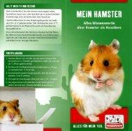 Wissenswertes über Hamster als Haustier - Tierzentrum-Franken