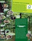 Lebensraum Baum - Seite 7