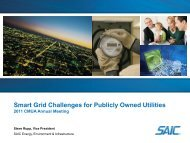 Smart Grid Challenges for Publicly Owned Utilities