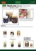 KasseL Candles Catalogue - Alma Importers - Page 6