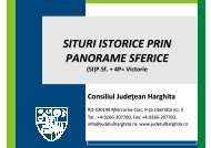 situri istorice prin panorame sferice - Consiliul Judeţean Harghita