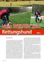 Vom Welpen zum Rettungshund - Teil 5 - Teamcanin