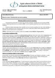 Onemocnění nervové soustavy - Hroch