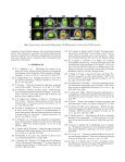 Assessment of Cancer Therapy Effects Using Texton-Based ... - Page 4