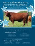 SG-USA -January-2012-small.pdf - Caballo Rojo Publishing - Page 3