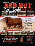 SG-USA -January-2012-small.pdf - Caballo Rojo Publishing - Page 7