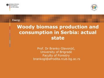 Energy Woody biomass production and consumption in Serbia