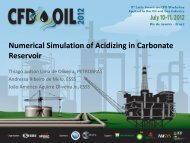 Numerical Simulation of Acidizing in Carbonate ... - CFD OIL 2012