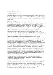 Biología: El Sistema Endocrino Glándula Hipófisis La ... - Escolares