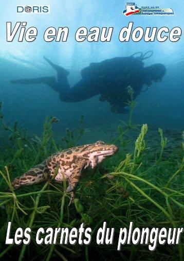 Petite lentille d'eau - Marine club
