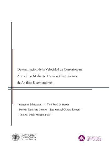 Tesis Pablo Monzonl.pdf - RiuNet - UPV