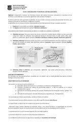 INSTITUTO NACIONAL - Sistemas