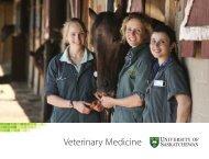 Veterinary Medicine - University of Saskatchewan