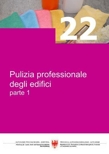 Pulizia professionale degli edifici – parte 1 - Fachschule für ...