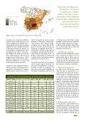 Cultivo Fincas Entrevista - Olint - Page 7