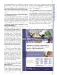 Itt - Regio Regia - Page 7