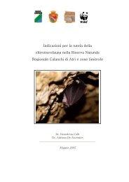 Studio Chirotterofauna - Riserva Naturale dei Calanchi di Atri
