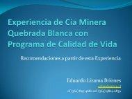 Eduardo Lizama, Director Consultor de Effective ... - Cruz Blanca