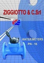 Page 1 Page 2 Precisione - Accuracy ZIGGIOTTO D Dati Tecnici ...