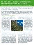 IL BUONO CHE FA BENE - Melinda - Page 4