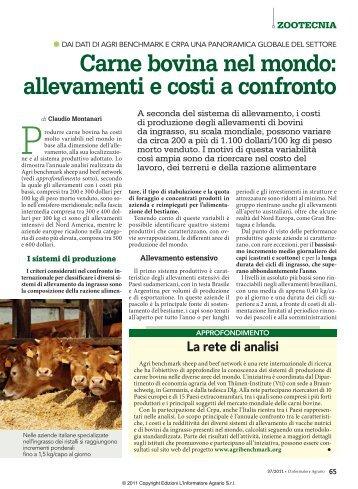 Carne bovina nel mondo: allevamenti e costi a ... - Ismea Servizi