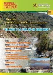 Revista Agricultura para el desarrollo edición Nº 04 - Dirección ...