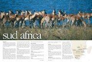 Sud Africa 7 6 Sud Africa - I Viaggi dell'Airone