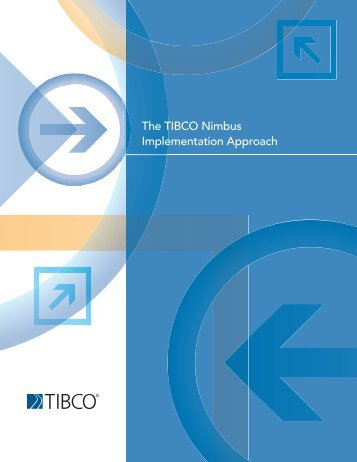 The TIBCO Nimbus Implementation Approach