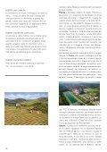 notizie 71 - Anfiteatro - Page 7