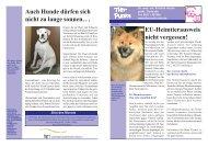 Hitzestress: Richtiges Verhalten ist lebenswichtig - Tierarztpraxis Dr ...