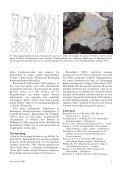 Svampe 36 - Page 5