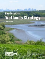 New York City Wetlands Strategy (May 2012) - NYC.gov