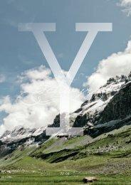 Y YNº 04 - Rigi-Mythen