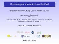 Cosmological simulations on the Grid - Univers Invisible