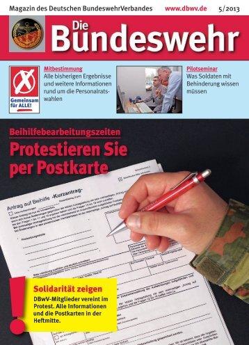 Magazin052013