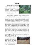 hamaika bide san ferminetara - Page 2