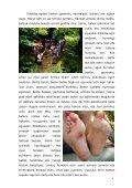 hamaika bide san ferminetara - Page 5